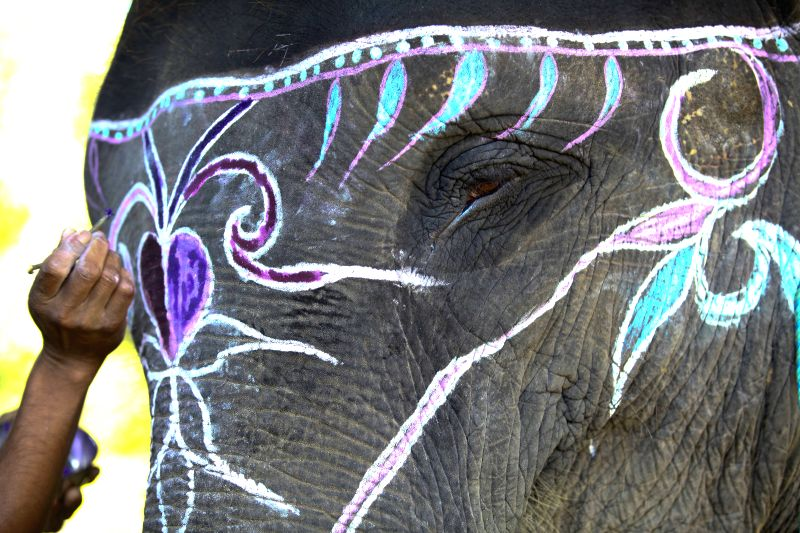 An elephant is decorated before the Elephant Beauty Pageant during the 11th Elephant Festival in Sauraha, Chitwan, Nepal, on Dec. 28, 2014. (Xinhua/Pratap ...