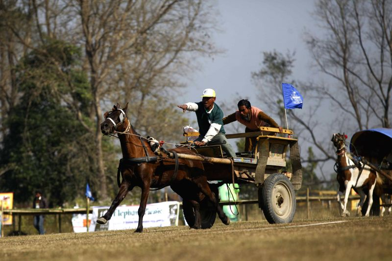 People race on horse carts to the finishing line during the Elephant Festival in Sauraha, Chitwan, Nepal, Dec. 29, 2014.
