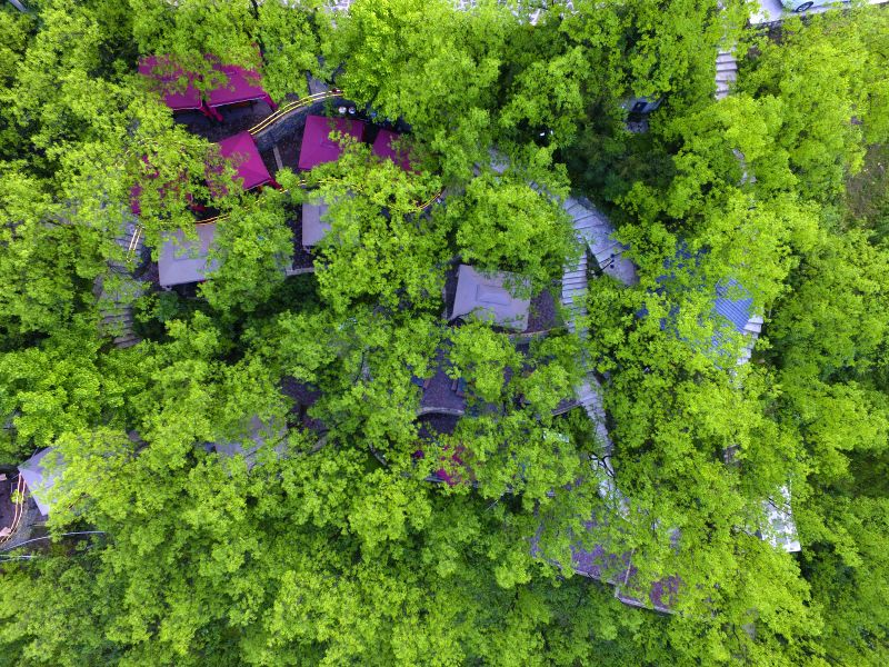 CHONGQING, May 9, 2017 - Aerial photo taken on May 8, 2017 shows a hot pot restaurant in jujube forest in southwest China's Chongqing Municipality.