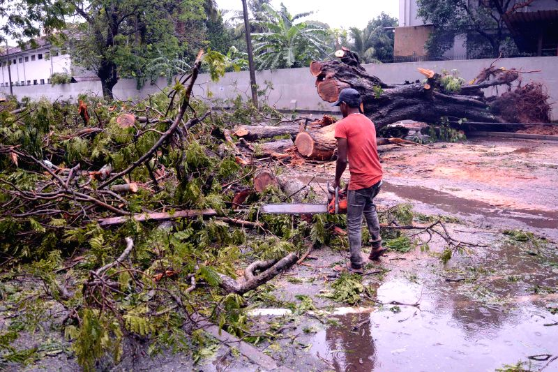 COLOMBO, Nov. 30, 2017 - A worker clears off fallen trees in Colombo, Sri Lanka on Nov. 30, 2017. At least six people were killed and 23 injured when strong winds and heavy rains lashed Sri Lanka ...
