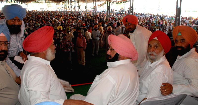 Congress candidate from Amritsar, Capt. Amarinder Singh addressing a rally at Majitha near Amritsar on April 12, 2014.