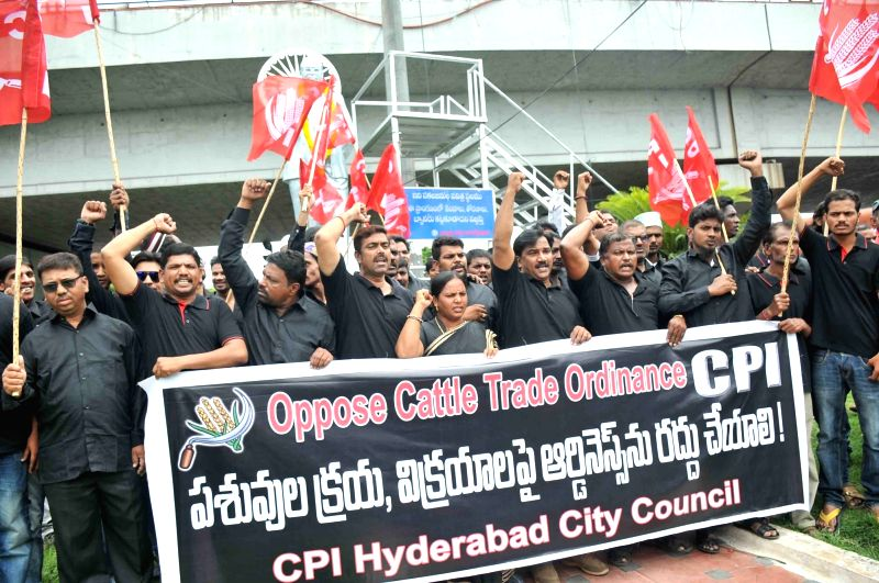 CPI activists stage a demonstration against cattle trade ordinance in Hyderabad on June 7, 2017.