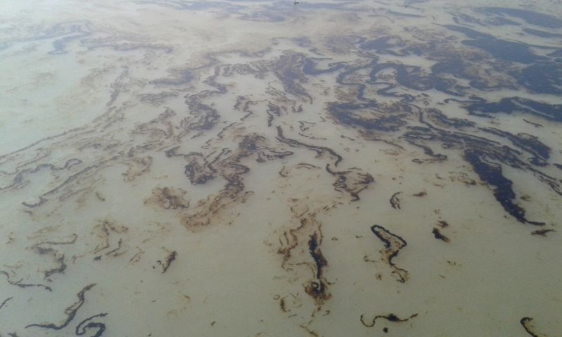 Photo taken on Dec. 9, 2014 shows the oil slick on the Shela River in Bangladesh. A 50-km oil slick coated the Shela River flowing through the Bangladeshi part of the