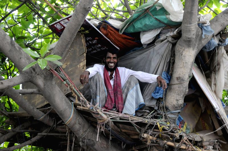 A sexagenarian Bangladesh man lives in a small house on a tree in Dhaka, Bangladesh, March 30, 2015.