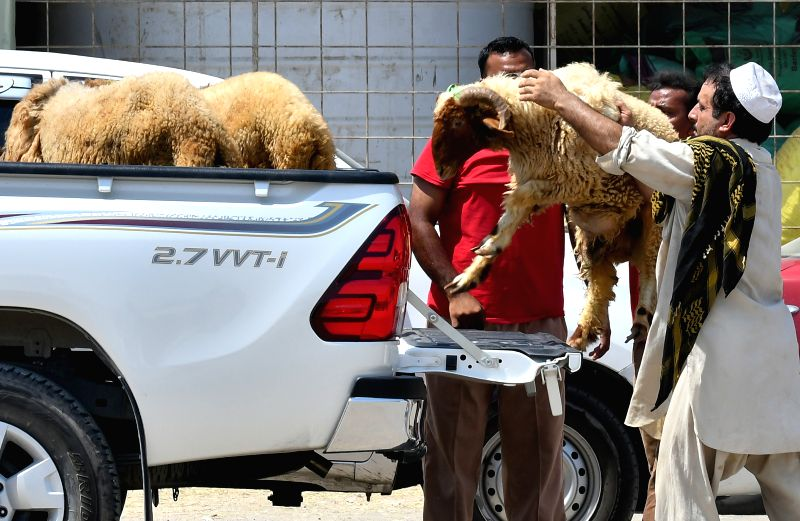 DOHA, Aug. 31, 2017 - People buy animals at a livestock market for the upcoming Eid al-Adha festival in Doha, Capital of Qatar, Aug. 3, 2017.
