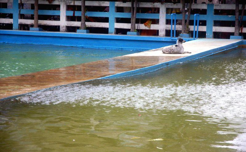 Dum Dum:Waves form in a swimming pool due to earthquake in Dum Dum, near Kolkata on April 25, 2015.