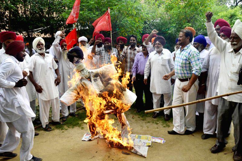 Farmers burn effigies of Parkash Singh Badal led Punjab government as demonstrate in Amritsar on July 25, 2014. - Parkash Singh Badal