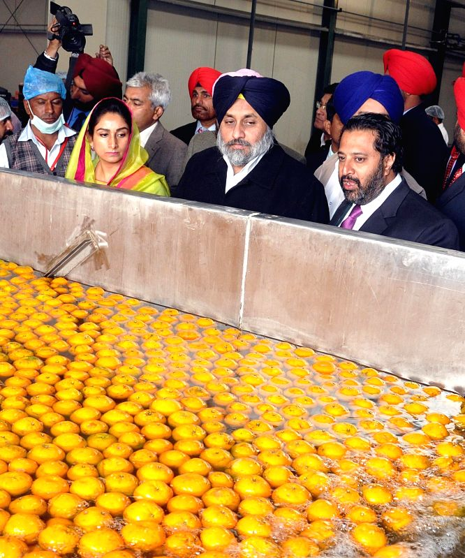 Union minister for Food Processing Industry Harsimrat Kaur Badal and Punjab Deputy CM Sukhbir Singh Badal during the inaugration of mega international food park in Dabwala Kalan, Fazilka, .