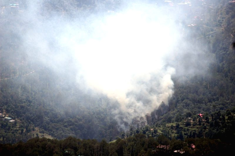 Fire breaks out in forests near Tara Devi in Shimla on June 2, 2017.