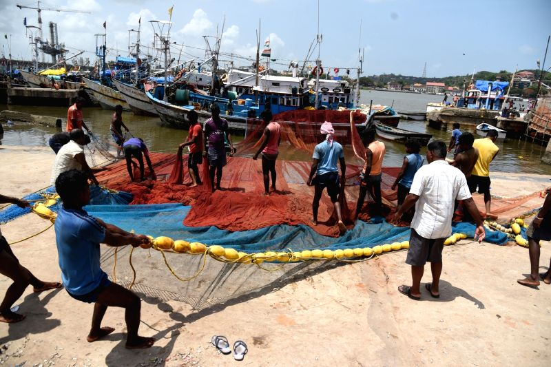 Fishermen unload their catch at Malim Jetty in Goa on May 29, 2017. The 61 days fishing ban will come into force from the 1st June along the 105 km-long coastline of the state.
