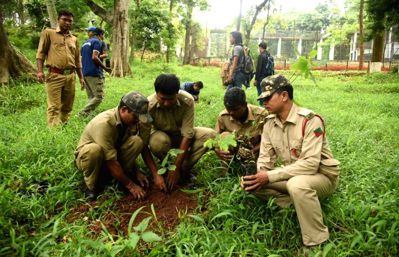 Forest guards plant a sapling on World Environment Day at Assam State Zoo cum Botanical Garden in Guwahati on June 5, 2017.