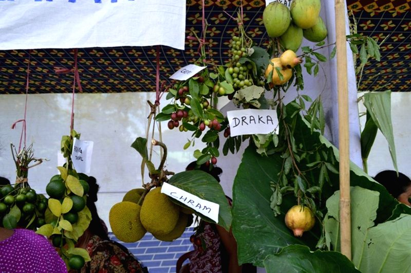 Fruits on display on the Day -1 of Indigenous Fruit & Vegetable Festival at Ampati in Garo Hills of Meghalaya on July 3, 2014.