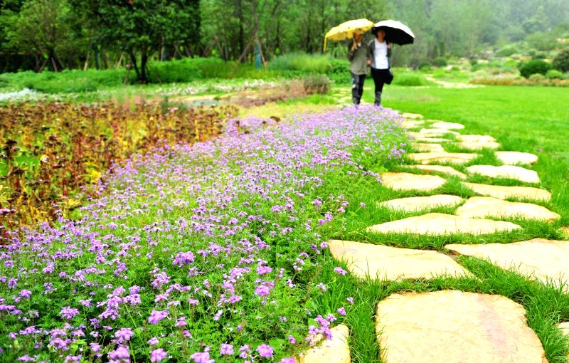 GUIYANG, June 14, 2017 - Citizens walk in a park in Guiyang, capital of southwest China's Guizhou Province, June 14, 2017. In recent years, Guiyang enhanced its work to improve local environment. ...