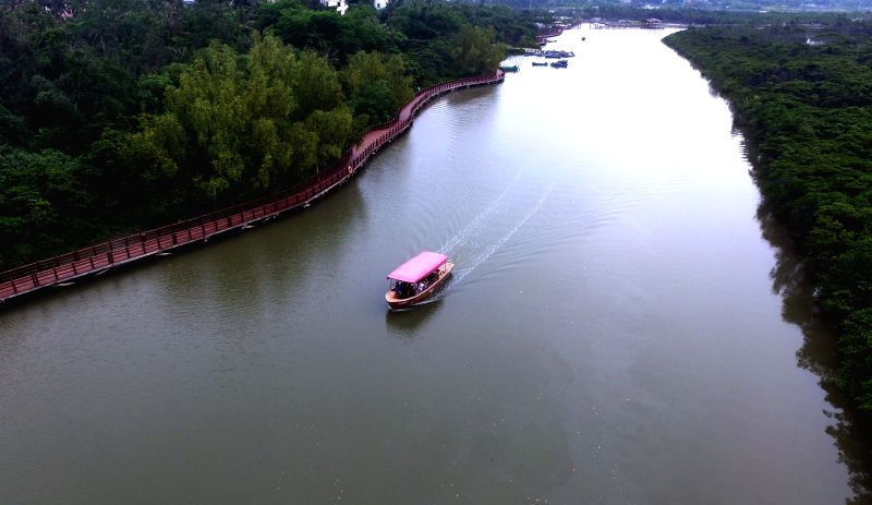 HAIKOU, May 20, 2016 - Aerial photo taken on May 20, 2016 shows a cruise boat running through Dongzhaigang mangrove natural reserve, China's first and biggest natural reserve for mangrove forests, in ...
