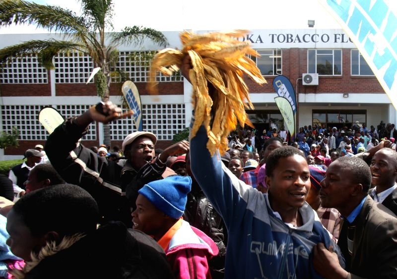 Tobacco farmers protest against low auction prices in front of the Boka Tobacco Auction Floors in Harare, Zimbabwe, March 4, 2015. The 2015 tobacco selling season ...