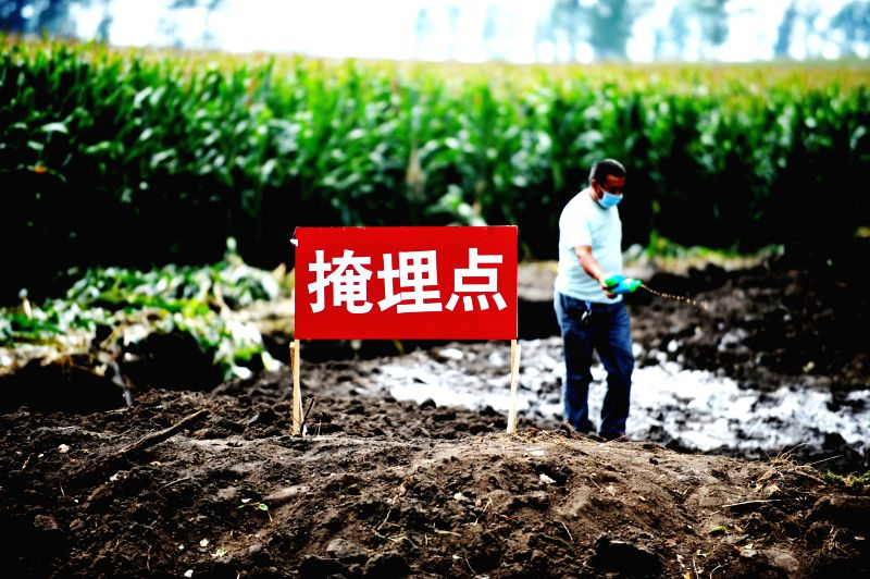 Yu Changsheng, an epidemic prevention worker, disinfects a burial site of culled poultry at Dongyue Village of Shuangcheng District of Harbin, capital of northeast ..