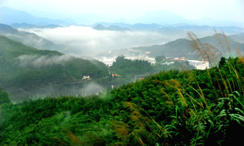 Photo taken on Sept. 3, 2014 shows the scenery of Foziling Town in Huoshan County, east China's Anhui Province. Huoshan, hometown of bamboo, has developed into a ...
