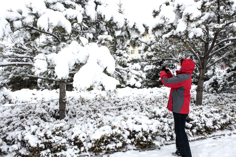 A resident takes photos of snow scenery in Jingpeng Town of Hexigten Banner (County), north China's Inner Mongolia Autonomous Region, April 12, 2015. Snowfall hit ...