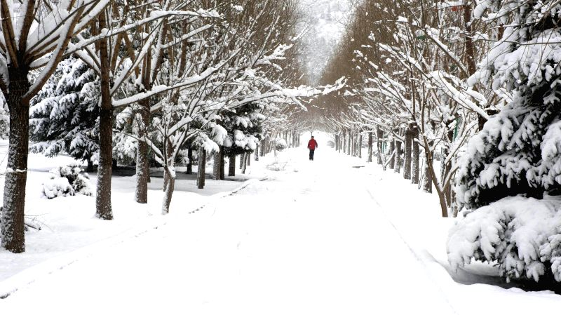 A resident walks at a park in Jingpeng Town of Hexigten Banner (County), north China's Inner Mongolia Autonomous Region, April 12, 2015. Snowfall hit parts of ...