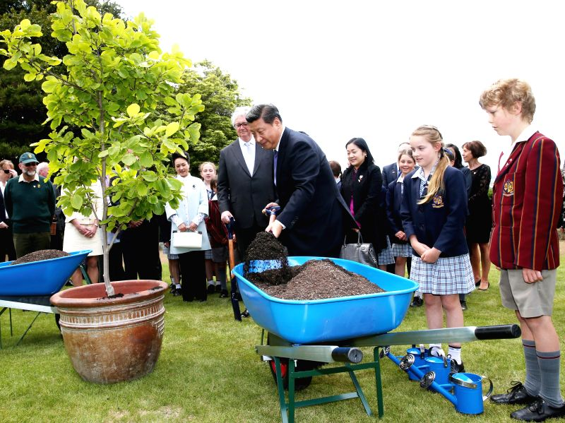 Hobart (Australia): Chinese President Xi Jinping plants a tree with students of a primary school in Tasmania state, Australia, Nov. 18, 2014.