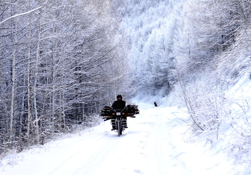 A man rides a motorbike in the snow-covered Moridaga Forest Park in Dahinggan Mountain forest region in north China's Inner Mongolia Autonomous Region, Dec. 29, ...