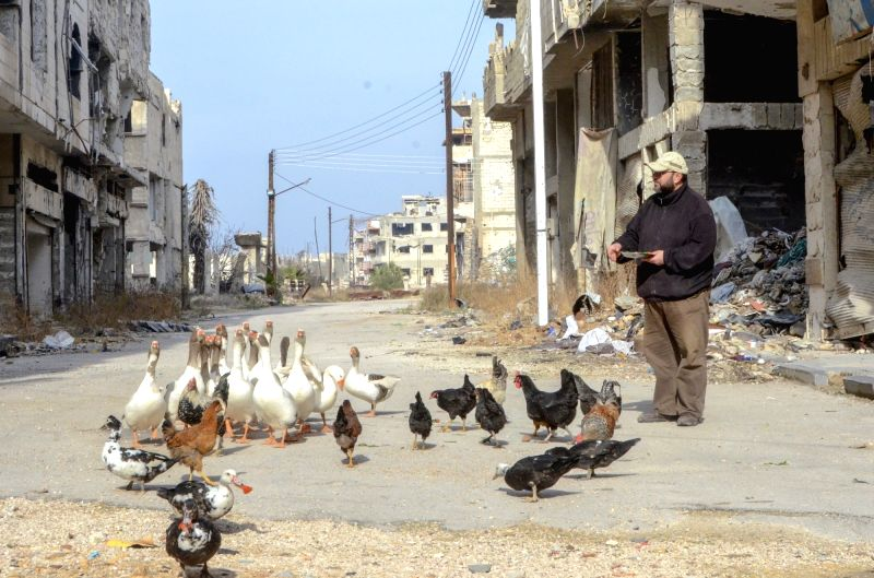HOMS (SYRIA), Jan. 29, 2018 Rabea Sahloul feeds ducks near his workshop in Hamidiyeh neighborhood in the old part of Homs, Syria, on Jan. 21, 2018. It wasn't easy for the 43-year-old ...