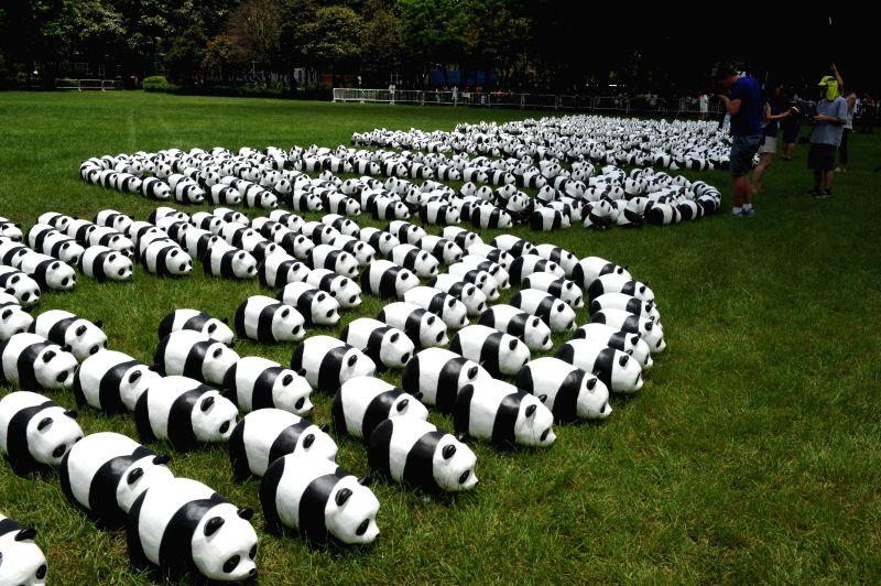 Paper pandas are displayed during an exhibition at the Victoria Park, south China's Hong Kong, June 19, 2014. A total of 1,600 paper pandas were displayed here on . - Paulo Grangeon