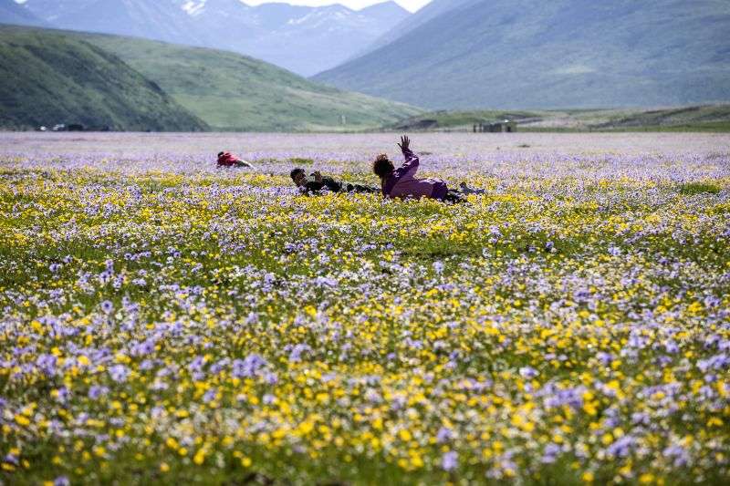 Tourists enjoy sunshine among flowers on the Emutang Pasture in Rangkou Township of Hongyuan County, southwest China's Sichuan Province, June 19, 2014. ...