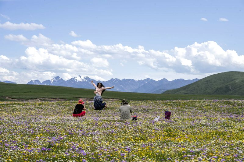 Tourists pose for photos among flowers on the Emutang Pasture in Rangkou Township of Hongyuan County, southwest China's Sichuan Province, June 19, 2014. ...