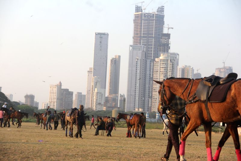 Horses with grooms at Mahalaxmi Racecourse- ARC.