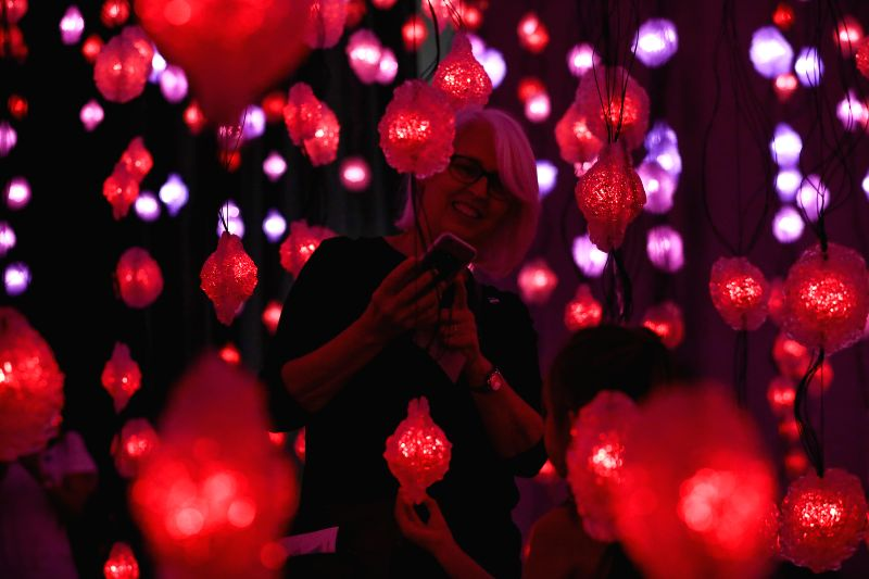 "HOUSTON, Aug. 11, 2017 - A woman visits the ""Pixel Forest and Worry Will Vanish"" exhibition by Swiss artist Pipilotti Rist at the Museum of Fine Arts in Houston, the United States, Aug. 10, ... - Pipilotti Rist"