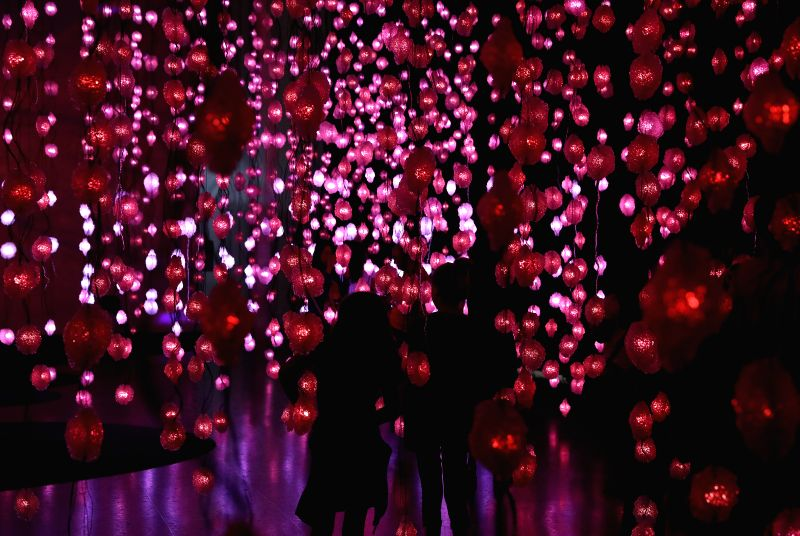 "HOUSTON, Aug. 11, 2017 - People visit the ""Pixel Forest and Worry Will Vanish"" exhibition by Swiss artist Pipilotti Rist at the Museum of Fine Arts in Houston, the United States, Aug. 10, ... - Pipilotti Rist"