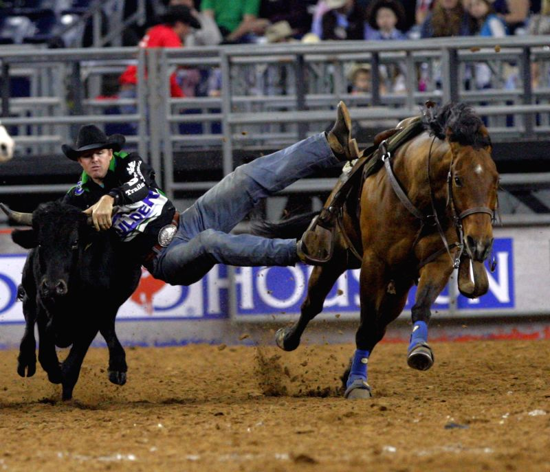 A cowboy jumps off his horse to capture a calf in a race during the Rodeo Houston in Houston, the United States, March 9, 2015.
