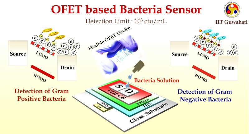 Indian Institute of Technology (IIT) Guwahati researchers have developed a low-cost, hand-held device for rapid detection of bacteria, bringing portable bacterial detection kits closer to reality. This novel, low-cost diagnostic device is a bio-compa