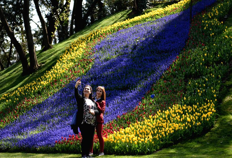 Tourists take selfie photo at Emirgan Park in Istanbul, Turkey, April 11, 2015. The annual Istanbul International Tulip Festival comes usually in April and the ...