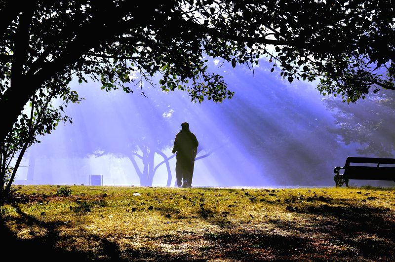 A man at the Central Park on a foggy morning in Jaipur, on Dec 21, 2014.