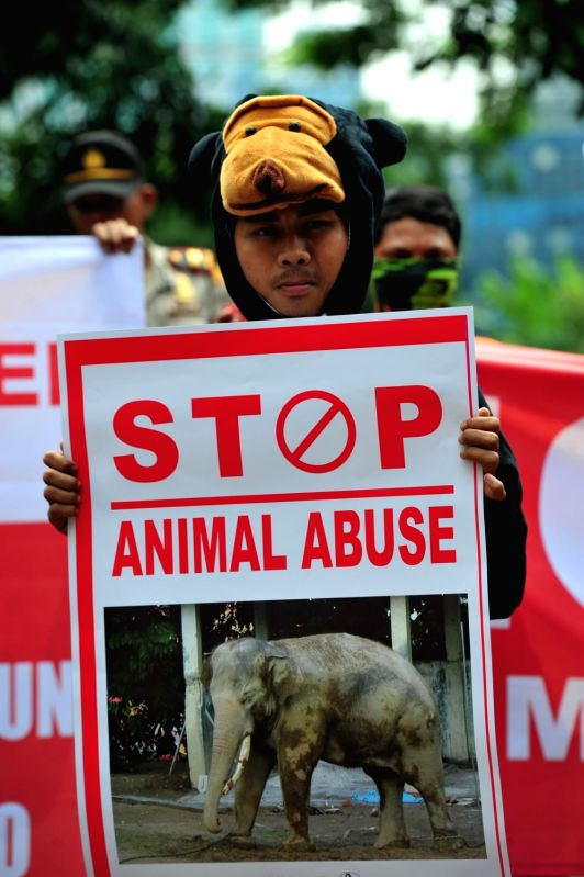 JAKARTA, Aug. 8, 2016 - An Indonesian activist wearing costume of endangered animal holds a placard during a protest against animal abuse outside the Ministry of Environment and Forestry in Jakarta, ...