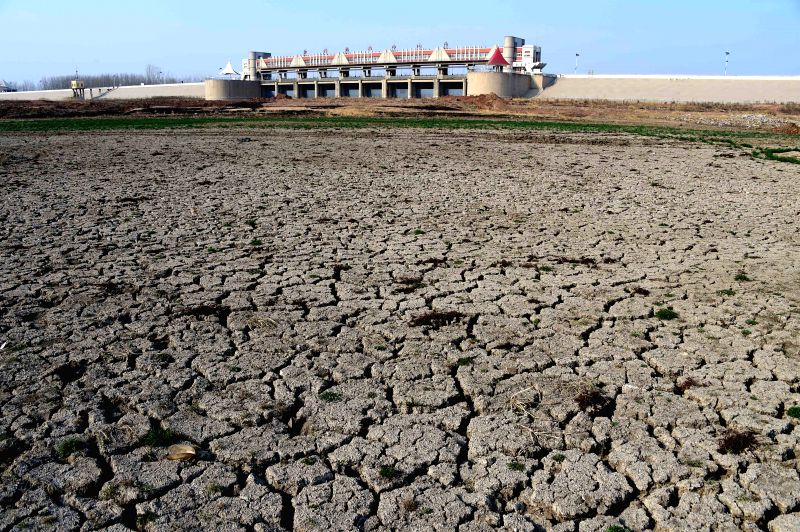 Photo taken on March 26, 2015 shows chapped bed of the Moushan Reservoir in Anqiu City, east China's Shandong Province, March 26, 2015. The reservoir of a capacity ...