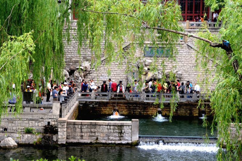 Tourists view a spring amid willow trees in Jinan, capital of east China's Shandong Province, May 16, 2014. Jinan is famous for its numerous willow trees. (Xinhua/Feng