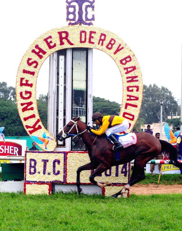 Jockey Suraj Narredu in action during Kingfisher Derby 2014 at Bangalore Turf Club in Bangalore on July 13, 2014.