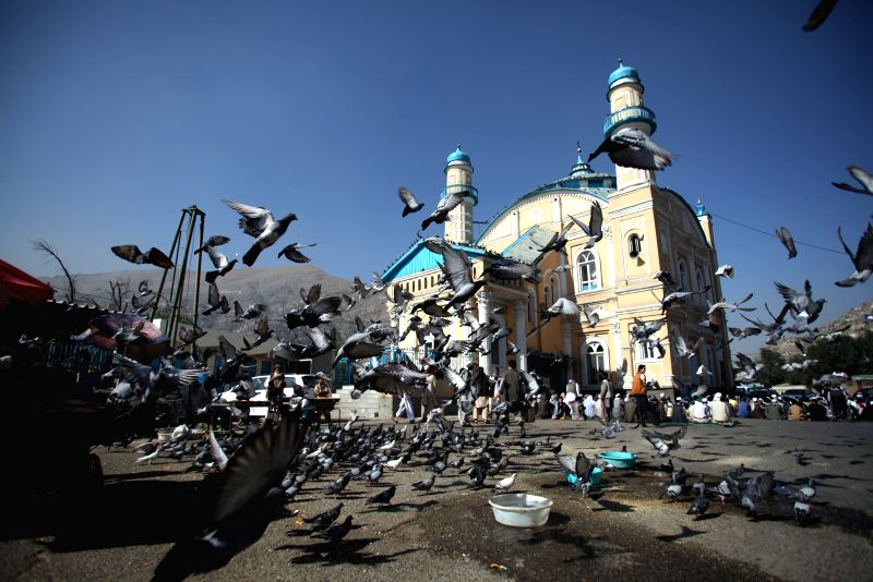 Pigeons are seen near a mosque before Eid-al-Fitr prayers in Kabul, Afghanistan, on July 28, 2014. Muslims around the world celebrate Eid al-Fitr, marking the end of .