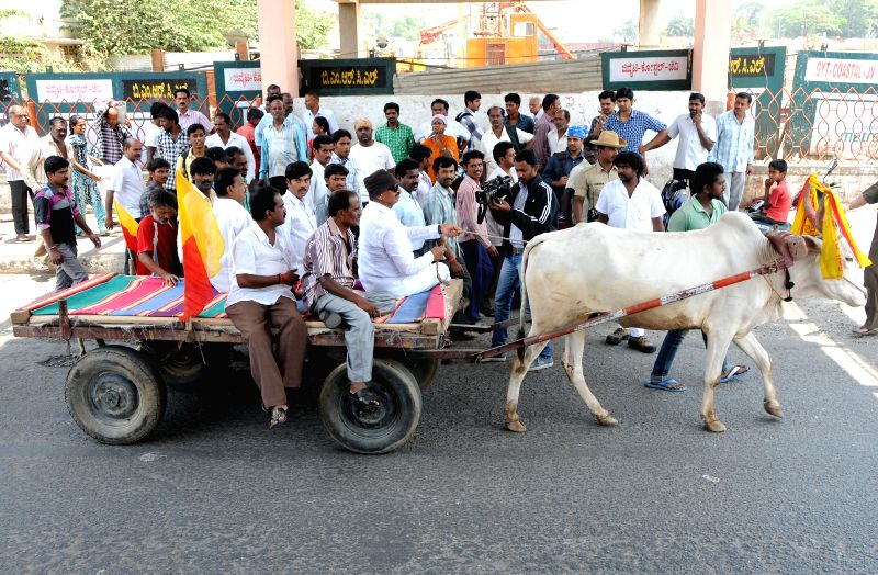 Kannada Chaluvali Vatal Paksha members led by party's president Vatal Nagaraj  take part in a bullock cart rally to protest against hike in KSRTC bus fares in Bangalore on May 4, 2014.