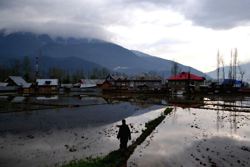 Kashmir: A view of Kashmir valley after rains on April 4, 2016.