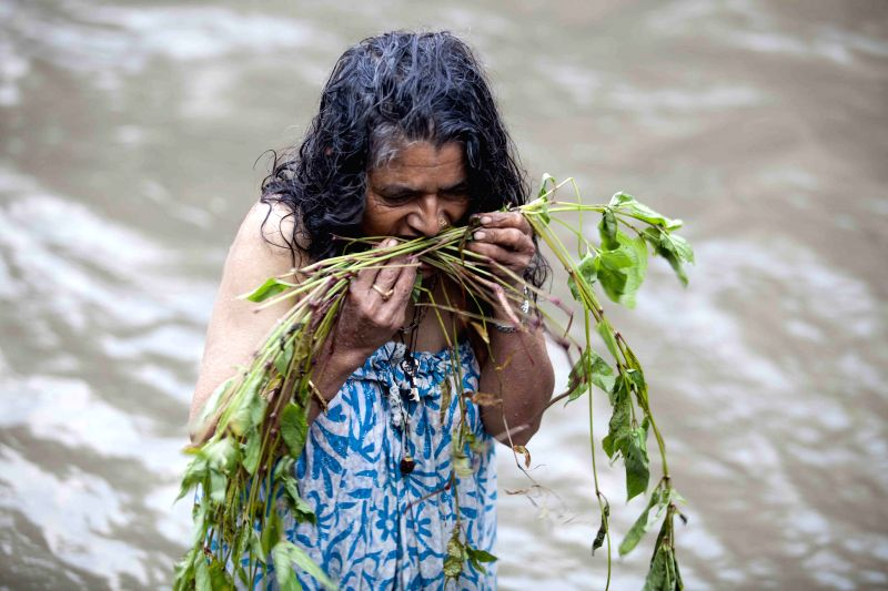 A Hindu woman takes a bathing ritual using Dattiwan, sacred twigs to cleanse themselves and worships at the banks of the Bagmati River on the occasion of the ...