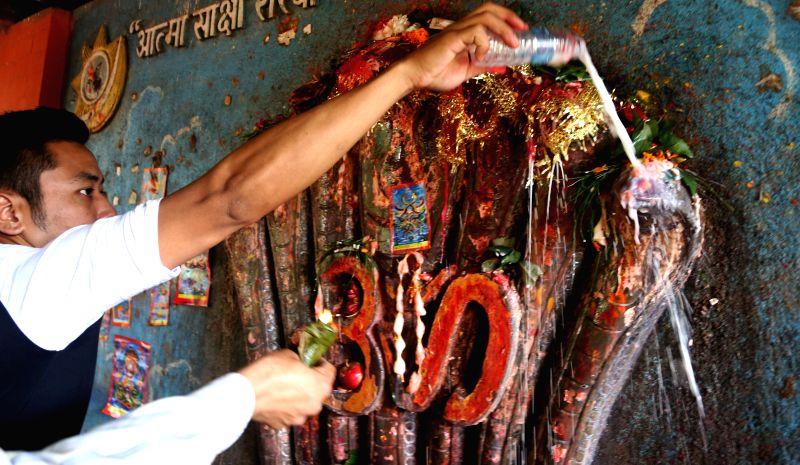 KATHMANDU, Aug. 7, 2016 - A Hindu devotee offers cow milk to a statue of a snake during the celebration of Nag-Panchami, a Hindu festival for worshipping the serpent deity, in Kathmandu, capital of ... - Sunil Sharma
