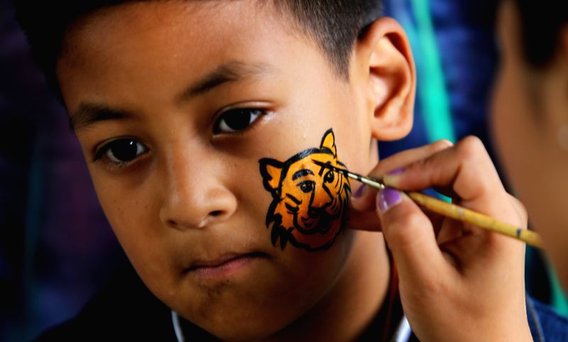 KATHMANDU, July 29, 2016 - A Nepalese kid gets his cheek painted with a tiger in the celebration of International Tiger day in Kathmandu, Nepal, July 29, 2016. International Tiger day is celebrated ...