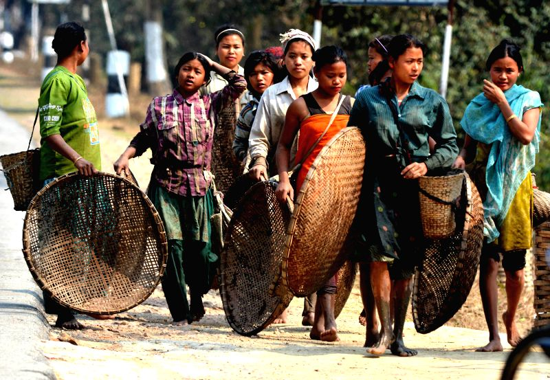 Tribal women return home after fishing with their traditional equipments made of bamboo at Kaziranga, Assam on Feb 18, 2015.