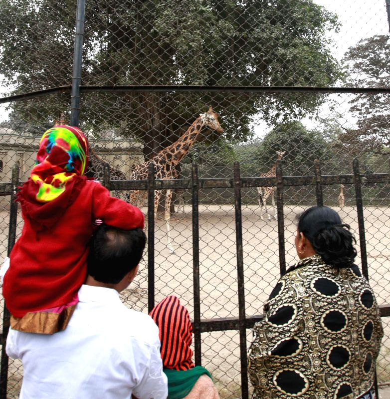 People throng Alipore Zoological Gardens in Kolkata on Jan 1, 2015.