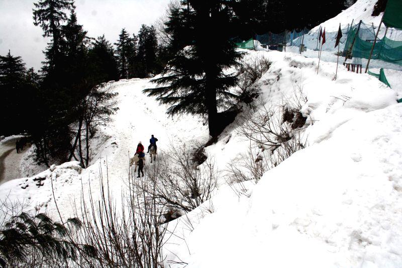 Kufri, a hill station near Shimla receives fresh snowfall on Jan 22, 2015.