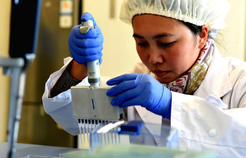 A research staff member tests new vaccine (S-IPV) against poliomyelitis at the Institute of Medical Biology of the Chinese Academy of Medical Sciences, located in ..
